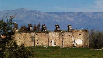 De Torviscoso hoy solo queda el esqueleto destechado de su iglesia, a 8,97 kms de Peraleda en línea recta en dirección norte casi perfecta.