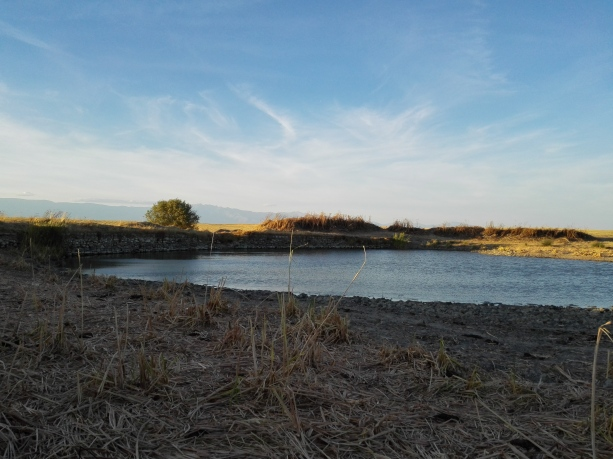 Laguna en la fuente de La Cuadra